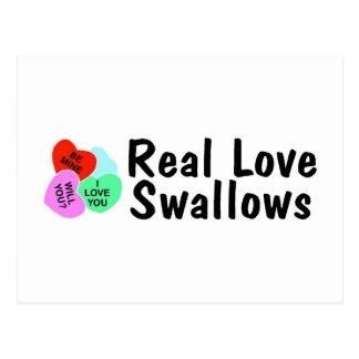 Real Love Swallows Postcard