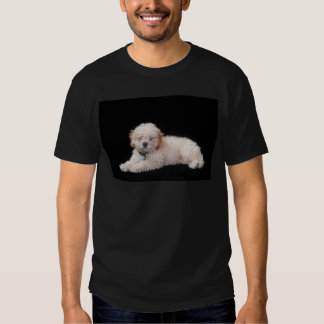 Real Men Love Poodles T-Shirt
