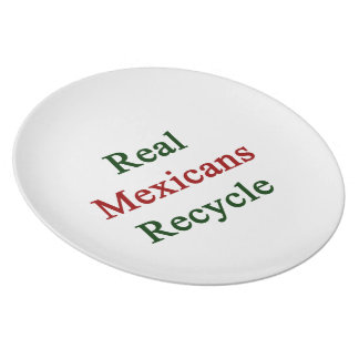 Real Mexicans Recycle Melamine Plate