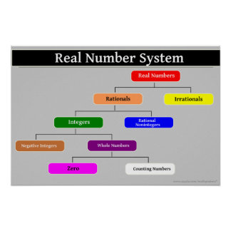 Real Number System Math Poster