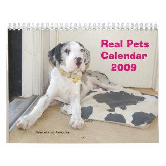 Real Pets 2009 Calendar