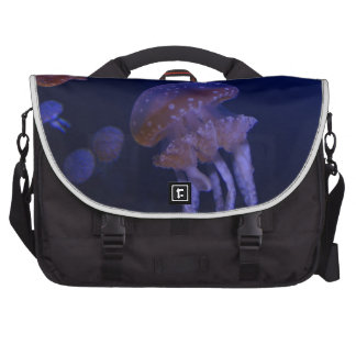 Real photo taken of jelly fish computer bag