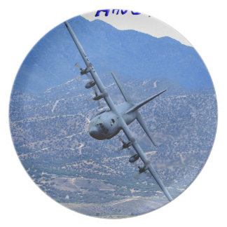 REAL PLANES HAVE PROPS MELAMINE PLATE