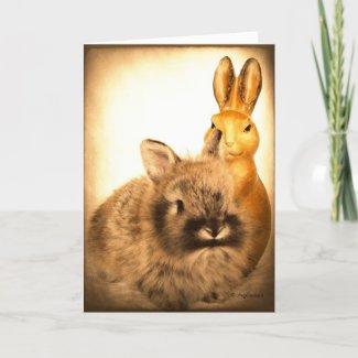 Real Rabbit and Fake Rabbit Card