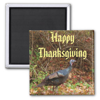 REAL THANKSGIVING TURKEY magnet