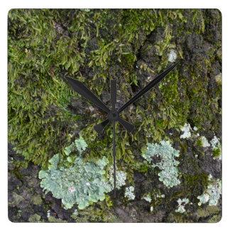Real Tree Photography Camo Clock