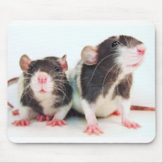Real Women Own Rats! Mouse Pad