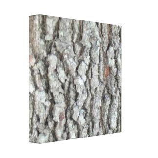 Real Wood Camouflage Oak Tree Bark Camo Canvas Print