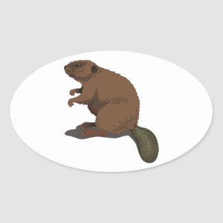 Realistic Beaver Stickers