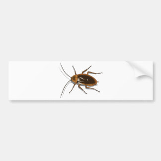 Realistic Brown Cockroach Insect Bumper Sticker