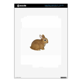 Realistic Bunny Rabbit iPad 3 Decal