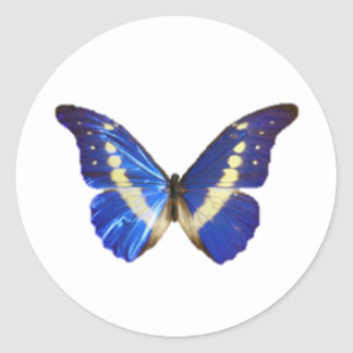 Realistic Butterfly Classic Round Sticker