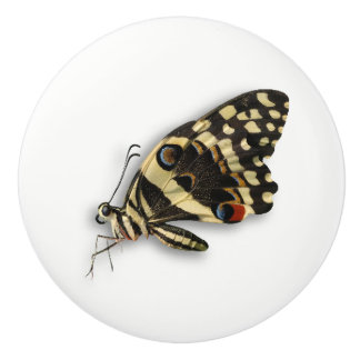 realistic butterfly knob
