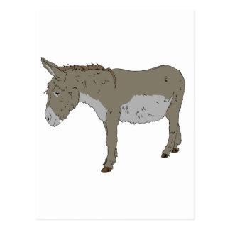 Realistic Cartoon Donkey Postcard