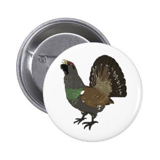 Realistic Grouse Bird Pinback Buttons