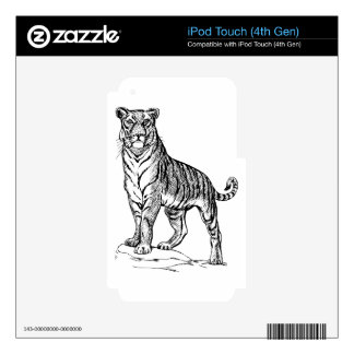 Realistic Hand Drawn Tiger Facing Forward Skin For iPod Touch 4G