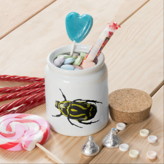 Realistic Hornless Yellow and Black Beetle Insect Candy Jars
