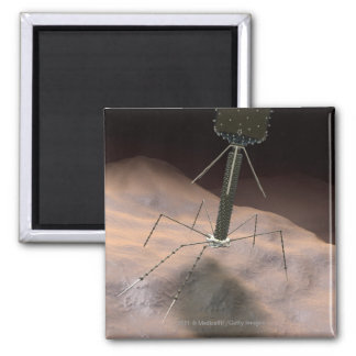 Realistic Illustration of bacteriophage Magnet