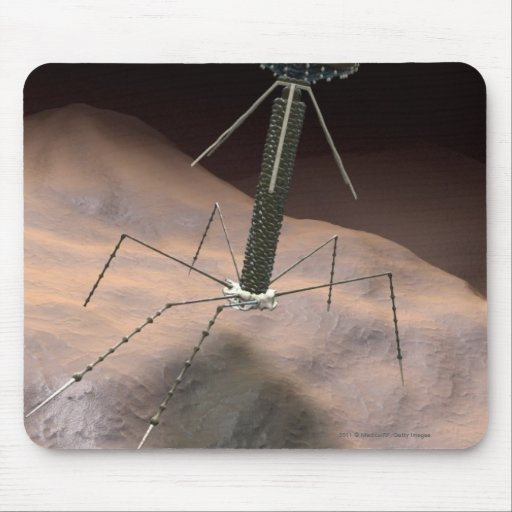 Realistic Illustration of bacteriophage Mouse Pad