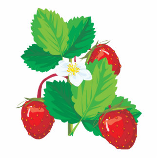 realistic juicy strawberries cut outs