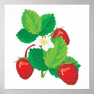 realistic juicy strawberries poster