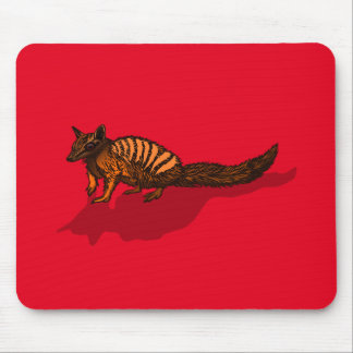 Realistic Numbat Mouse Pads