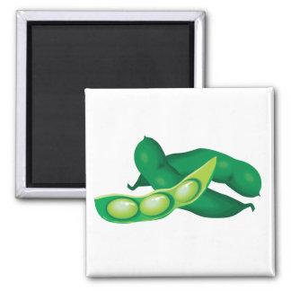 realistic pea pods 2 inch square magnet