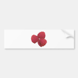 realistic raspberries bumper sticker