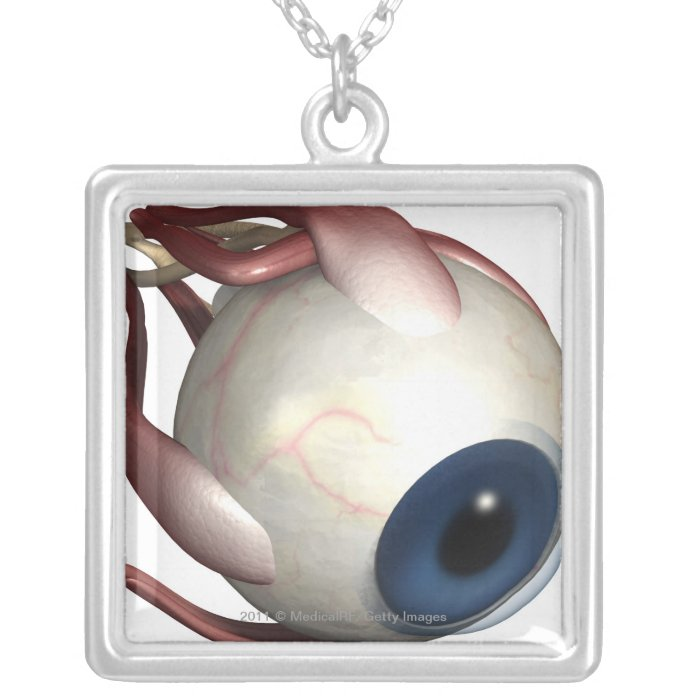 Realistic rendering of the muscles of the eye silver plated necklace