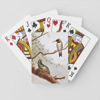 Realistic Ruby-Throated Hummingbird Art Card Decks