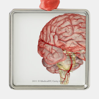 Realitic rendering of the human brain christmas tree ornament