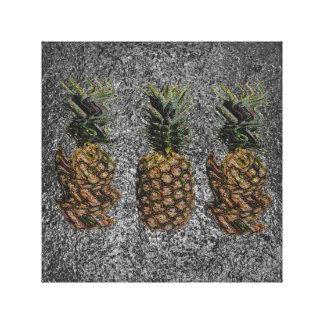Reality vs. Pineapple Canvas Print