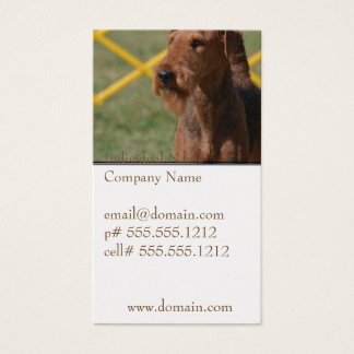 Really Cute Airedale Terrier Business Card