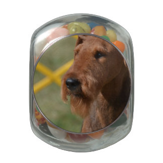 Really Cute Airedale Terrier Glass Jars