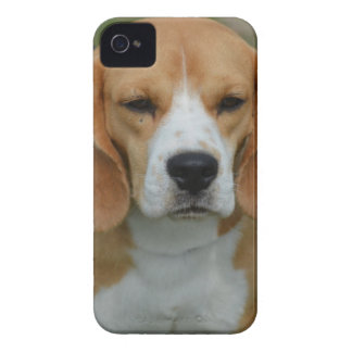 Really Cute Beagle Pup iPhone 4 Case-Mate Cases