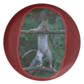 Really Cute funny image of Squirrel Party Plate