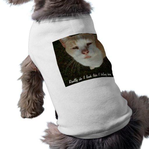 Realmente ahora camisas de perritos