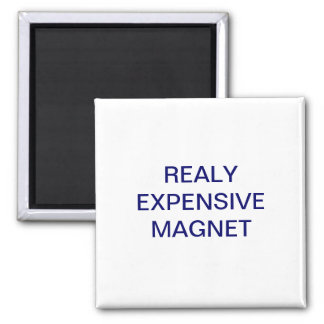 REALY EXPENSIVE MAGNET