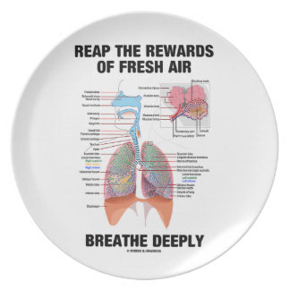 Reap The Rewards Of Fresh Air Breathe Deeply Dinner Plate