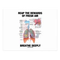 Reap The Rewards Of Fresh Air Breathe Deeply Postcard