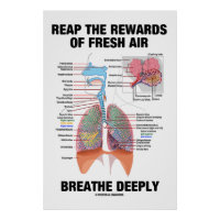 Reap The Rewards Of Fresh Air Breathe Deeply Poster