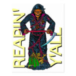 Reapin' Y'all Robed Skeleton Post Cards