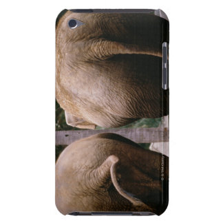Rear view of Asian elephants iPod Touch Covers