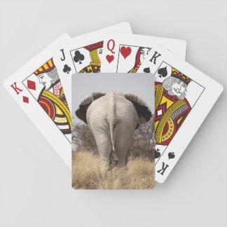 Rear view of elephant card decks