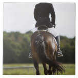 rear view of female dressage rider exercising large square tile