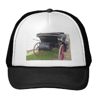 Rear view of old-fashioned horse carriage on green trucker hat
