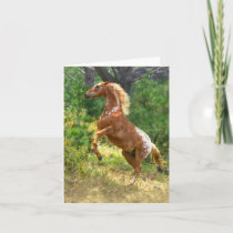 Rearing Appaloosa Horse Blank Note Card