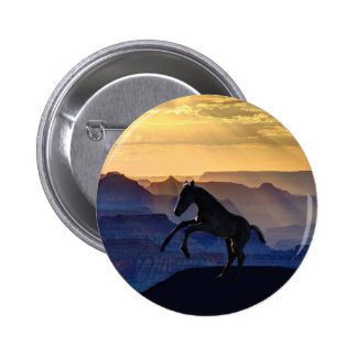 Rearing baby horse and canyons pinback button
