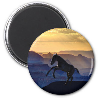 Rearing baby horse and canyons magnet