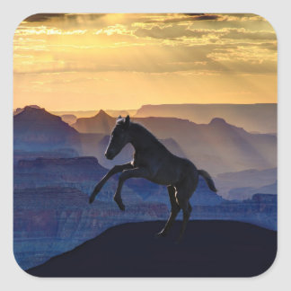 Rearing baby horse and canyons square sticker
